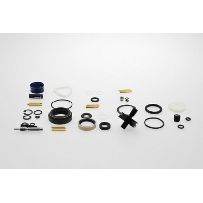 Reverb A2 Full Service Kit + New IFP